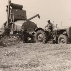 Landwirtschaft in Wixhausen